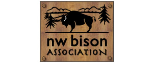 nw bison association